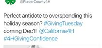 Last year, 4-H in Placer County was successful in attracting donations through its #GivingTues campaign. for ANR Report Blog