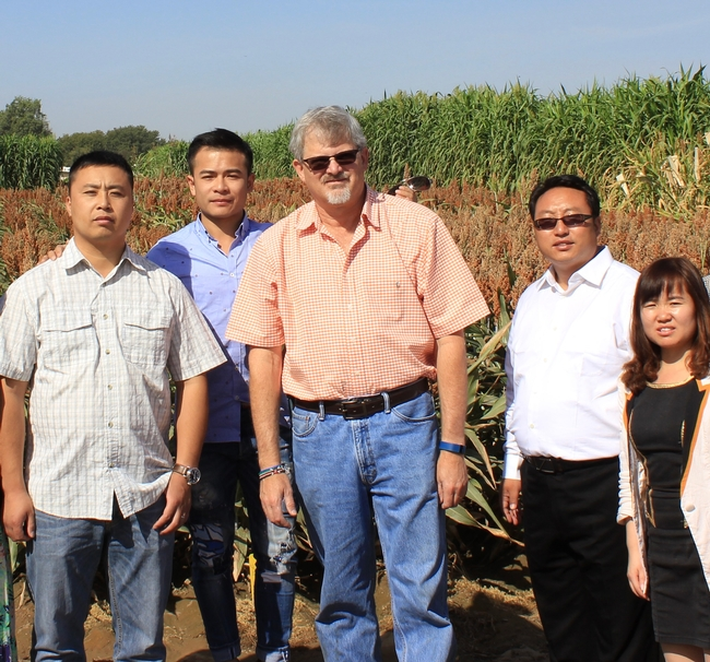 Jeff Dahlberg, center, with a delegation of Chinese sorghum scientists on Sept. 24, 2015, in a sorghum field at Kearney.