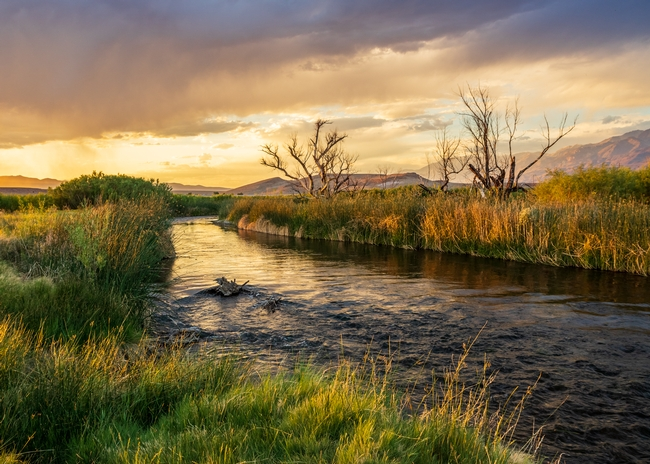 River flows between grassy riverbanks under the orange-tinted sky of day break or sunset.