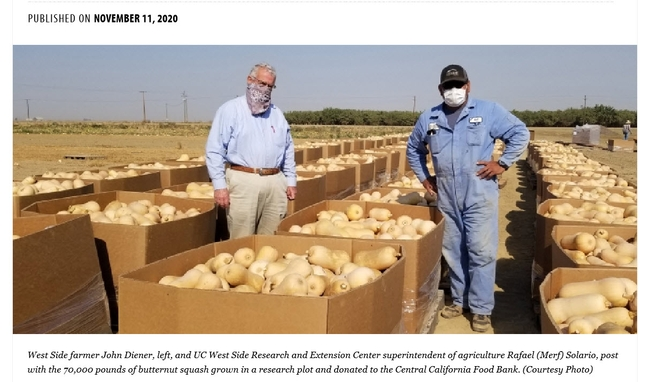 Jeff Mitchell and West Side REC partner with a local grower to donate butternut squash to the Central California Food Bank (from Morning Ag Clips)