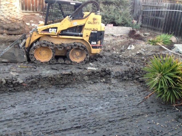 Bobcat moving across backyard pool that has been completely filled in with dirt and is now being graded for sod and new landscaping