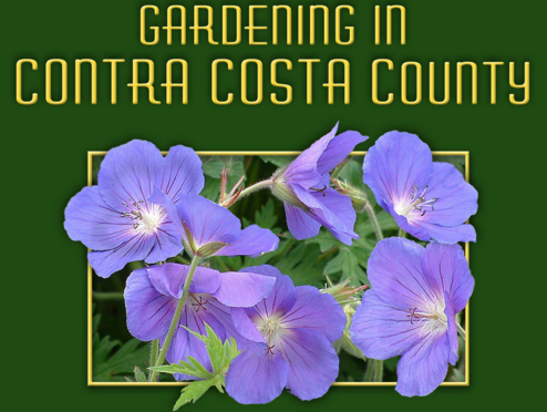 Contra Costa Water District's<br>Garden Guide