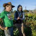 Jennifer Sowerwine discusses plantings with Jon Hoffman, farm manager of the UC Gill Tract Community Farm in Albany. (Photo: Saul Bromberger)