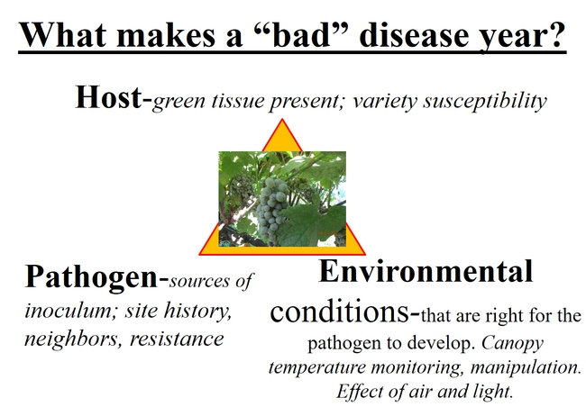a diagram showing the components of the disease triangle: host, pathogen, environment