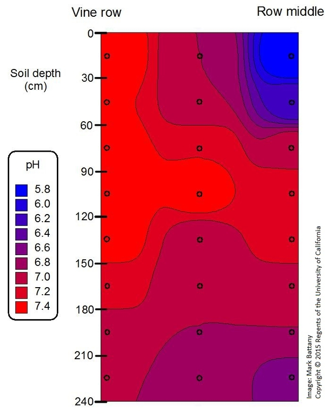 Soil pH increase in the vine row after a decade of drip irrigation. The 240 cm depth is equivalent to 8 feet.