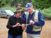 John Battles and SNAMP participant Lynn Lorenson discussing a tree core sample.