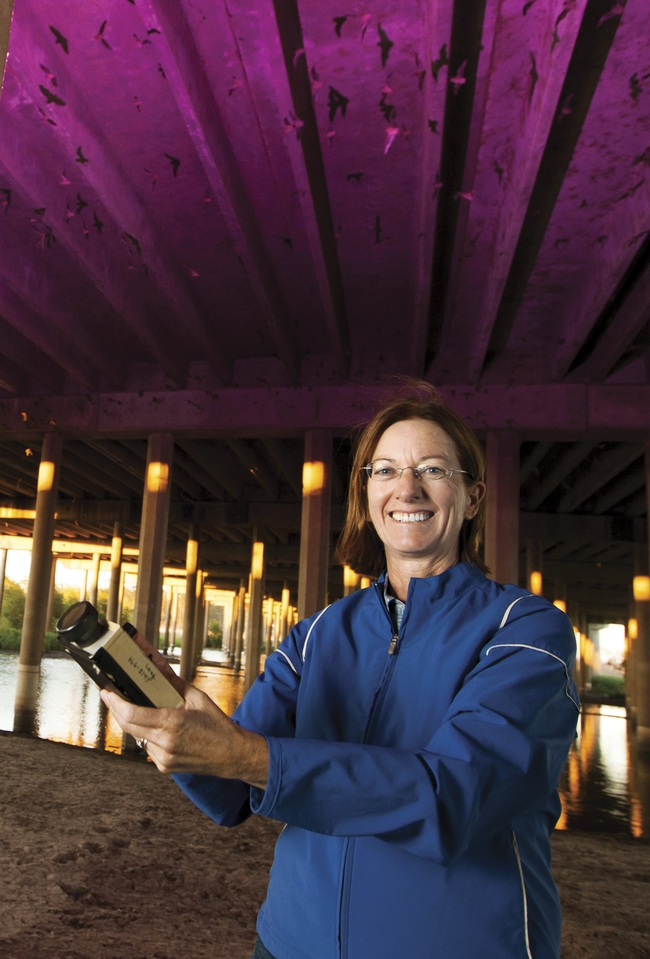 Rachael Long with a bat detector under the Davis causeway. (Photo: California Farm Bureau)