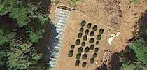 Google Earth Image of a cannabis grow site. The resolution of Google Earth images allowed the researchers to detect marijuana plants that were previously missed with other remote sensing techniques. for Green Blog Blog