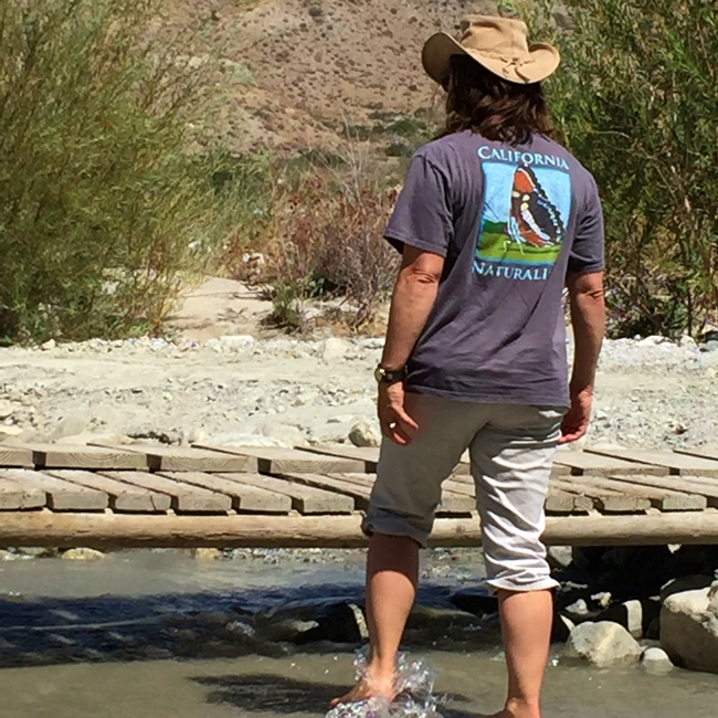 A California Naturalists explores the creek