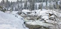 Snowmelt fills the South Yuba River near Emigrant Gap in March 2016. Climate change is expected to reduce the Sierra snowpack, resulting in major shifts in the timing and magnitude of flows in rivers fed by snowmelt. for Green Blog Blog