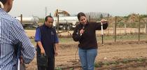 UCCE advisor Ruth Dahlquist-Willard (right) demonstrates how to evaluate soil moisture with a soil sampler. In the center is UCCE Hmong ag assistant Michael Yang. for Green Blog Blog