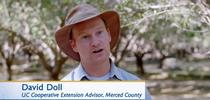 UCCE farm advisor Davis Doll is featured in the CIWR drought video about almonds. for Green Blog Blog