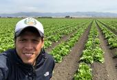Alejandro Del Pozo-Valdivia, UC Cooperative Extension entomology advisor in Monterey, Santa Cruz and San Benito counties, in an iceberg lettuce field in Chualar, Calif.