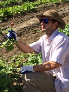 Chris Massa, Food Corps Member, leads student farm efforts at HAREC