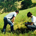 Elise GrasslandRestoration