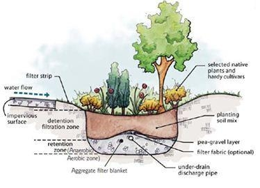uc master gardeners of monterey bay agriculture and naturalrain garden schematic diagram