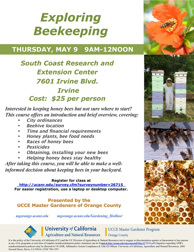 Join Us For Exploring Beekeeping