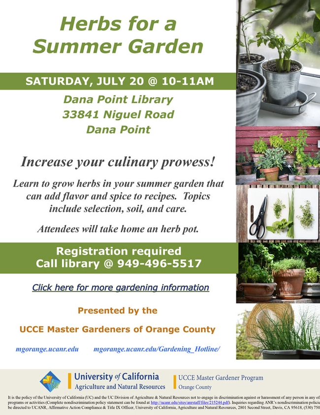 Increase Your Culinary Prowess! Learn To Grow Herbs In Your Summer Garden.