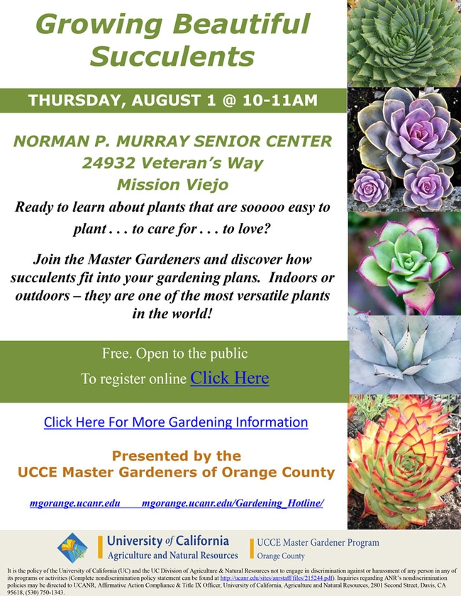 Ready to learn about plants that are easy to plant, to care for, to love?