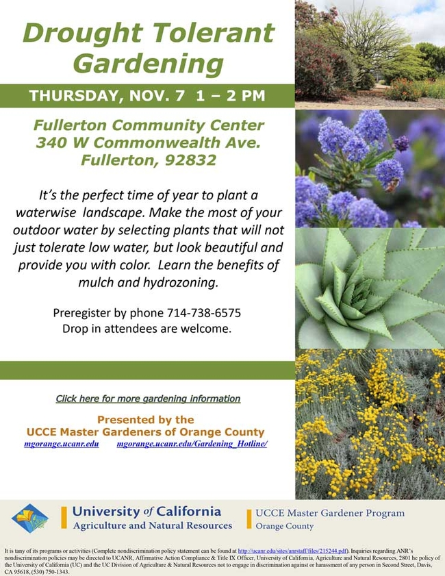 Drought Tolerant Gardening. Make The Most Of Your Outdoor Water.