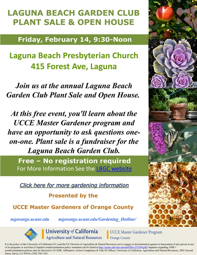 Join Us At The Annual Laguna Beach Garden Club Plant Sale And Open House