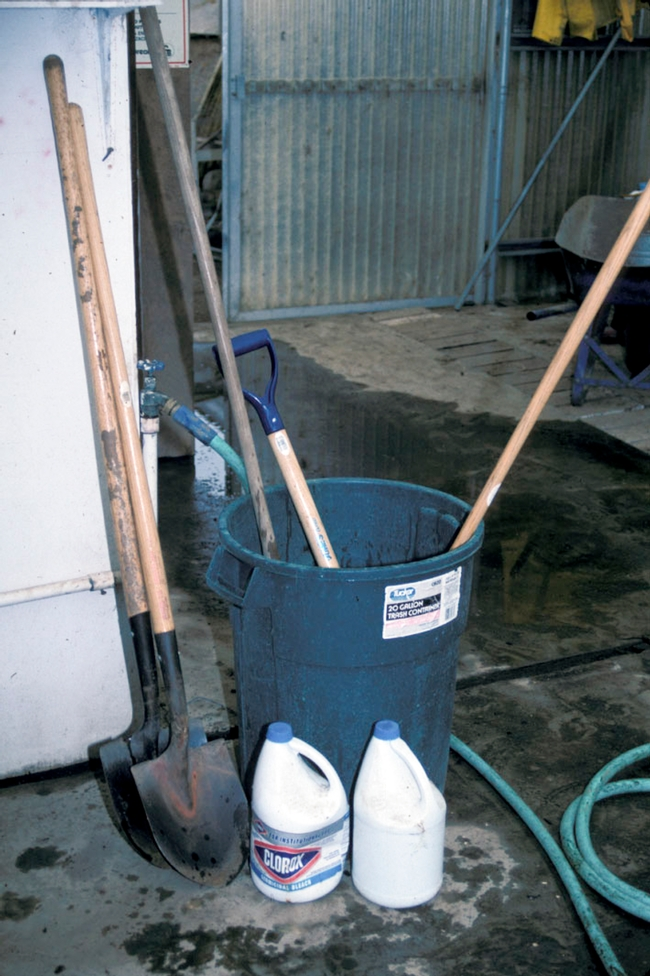 Tools must be free of clinging soil and debris before they are disinfected with chlorine bleach.