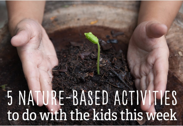 Link to garden activities for kids (and adults).