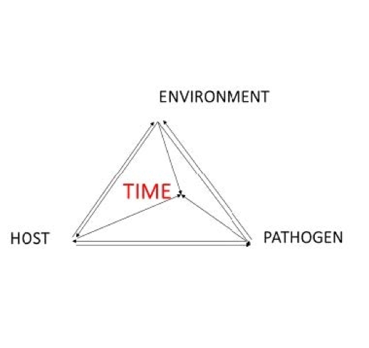 Figure 2 the disease triangle, a combination of host, environment, pathogen, and time are required for pathogens to be successful