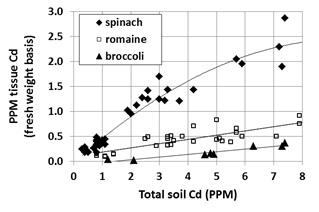 Fig. 1. Effect of total soil Cd concentration on tissue Cd concentration in spinach, romaine and broccoli (fresh weight basis); data from a 2013 survey of Salinas Valley fields.