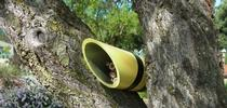 Nesting tube for cavity-nesting bees.  These will be available for purchase at the open house to support the Haven. for The Bee Gardener Blog