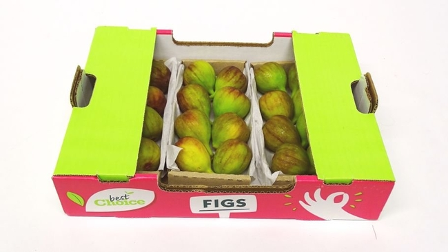 figfig pack spain