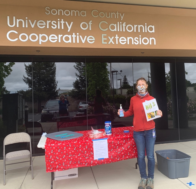 SOD Program Coordinator Kerry Wininger distributes collection packets to participants at the UCCE Sonoma office on May 3, 2020