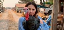 Yaxeli Saiz-Tapia says raising turkeys has raised her appreciation for where her food comes from. Photo by Shauna Aubin. for UCCE Sonoma Blog