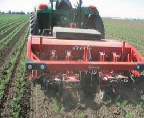Photo 2. IC Steketee Intelligent cultivators