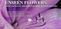 Unseen flowers exhibit announcement for UC Weed Science Blog