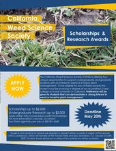 CWSS Student Scholarship Flyer