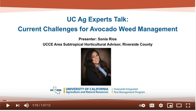 Current Challenges for Avocado Weed Management talk by Sonia Rios
