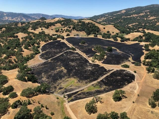 Coverage of controlled burn work by Cal Fire at Hopland REC (Photo courtesy of John Bailey)