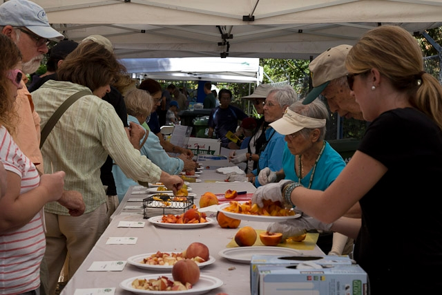 Visitors taste a variety of stone fruit at the UC Cooperative Extension Harvest Day.