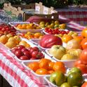 A larger assortment of tastier tomatoes could be in Californians' future.
