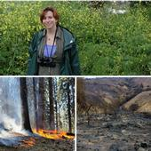 UCCE natural resources advisor Sabrina Drill is a fire science expert.