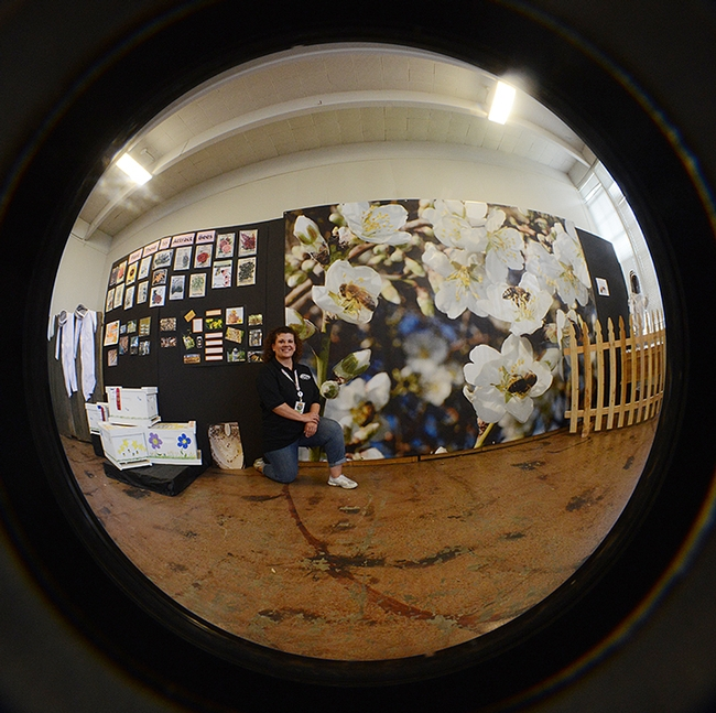 Fisheye view of the honey bee display at Madden Hall, Dixon May Fair. In front is Cammie Garton, fair employee. (Photo by Kathy Keatley Garvey)