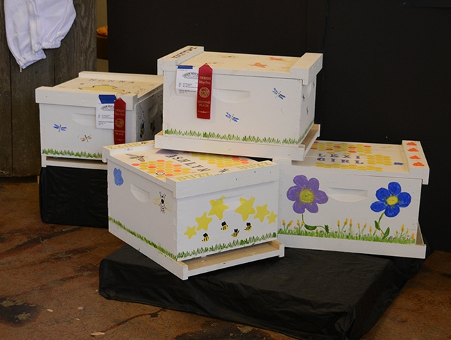 These decorated bee boxes are the work of youths in Garry Haddon's beekeeping project, Vaca Valley 4-H Club, Vacaville. (Photo by Kathy Keatley Garvey)