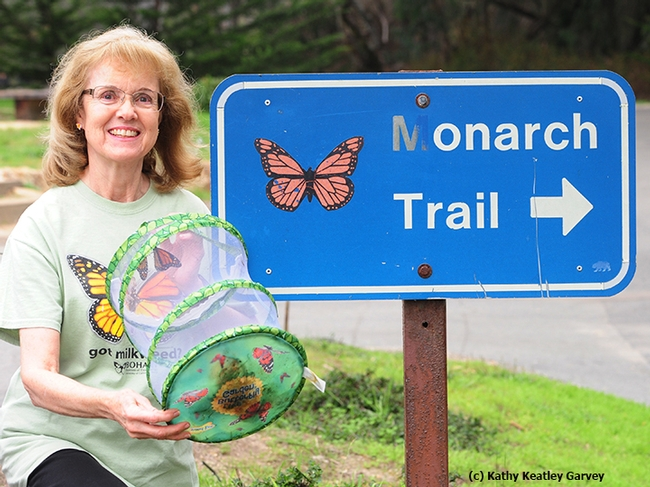 Marilyn, a butterfly enthusiast from Fairfield, ready to release two monarchs at the Natural Bridges State Park's monarch sanctuary. The butterfly mesh habitat is from the Bohart Museum of Entomology, UC Davis. The