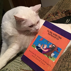 Editor Debra DeAngelo's cat checks out the Ipinion Syndicate book. (Photo provided by Debra DeAngelo)