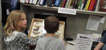 Moth Night at the Bohart Museum is fun and educational. Here two youngsters learn the differences between moths and butterflies at last year's event. (Photo by Kathy Keatley Garvey) for Bug Squad Blog