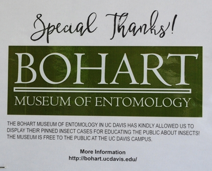 Thank you, Bohart Museum of Entomology