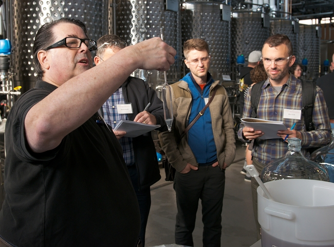 Pete Bakulic (left), president of the Mazer Cup International, the world's largest mead competition, leads his group of mead makers during the UC Davis Honey and Pollination Center's boot camp in the UC Davis Winery. (Photo courtesy of the Honey and Pollination Center)