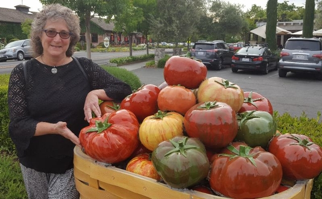 Entomologist/artist Diane Ullman with her tomato sculpture. for Bug Squad Blog