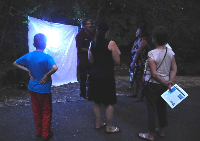 Standing in front of the blacklighting, Bohart associate Greg Kareofelas talks to moth enthusiasts at the 2017 Bohart Museum of Entomology Moth Night. (Photo by Kathy Keatley Garvey)
